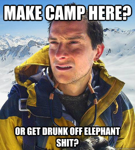 Make camp here? Or get drunk off elephant shit? - Make camp here? Or get drunk off elephant shit?  Bear Grylls