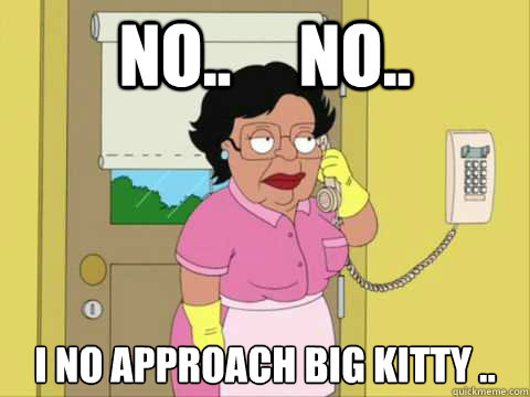 No..     No.. I no approach big kitty ..