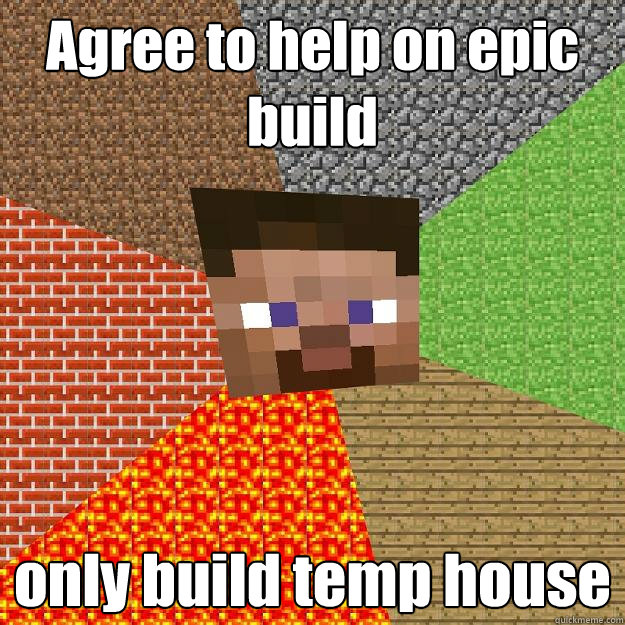Agree to help on epic build only build temp house  Minecraft