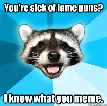 You're sick of lame puns? I know what you meme. - You're sick of lame puns? I know what you meme.  Lame Pun Coon