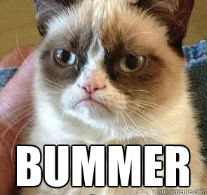 Grumpy Cat Joke Pictures