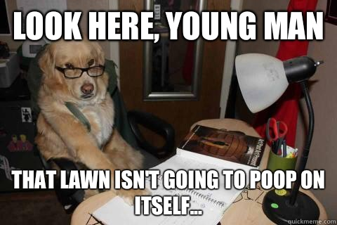 Look here, young man that lawn isn't going to poop on itself...