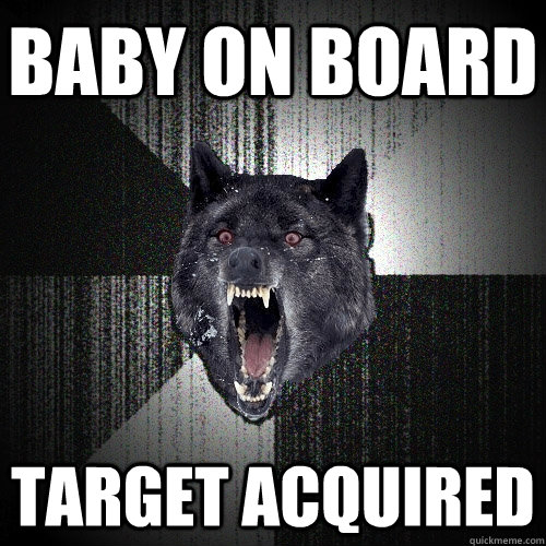 baby on board  target acquired - baby on board  target acquired  Insanity Wolf