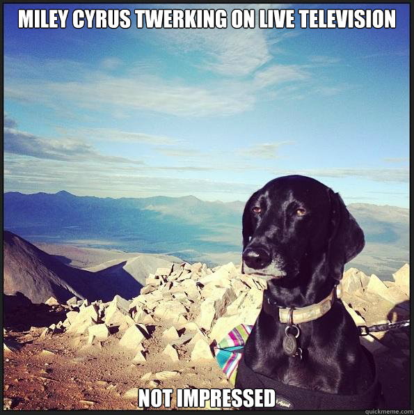 Miley Cyrus twerking on live television not impressed