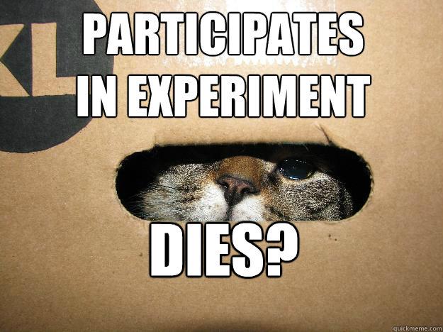 participates  in experiment dies? - participates  in experiment dies?  Freshman Schrodingers Cat
