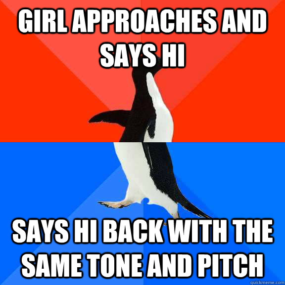 Girl approaches and says hi Says hi back with the same tone and pitch - Girl approaches and says hi Says hi back with the same tone and pitch  Socially Awesome Awkward Penguin