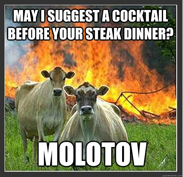 may i suggest a cocktail before your steak dinner? molotov - may i suggest a cocktail before your steak dinner? molotov  Evil cows