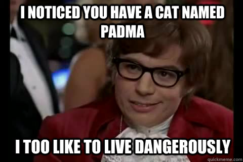I noticed you have a cat named padma i too like to live dangerously - I noticed you have a cat named padma i too like to live dangerously  Dangerously - Austin Powers