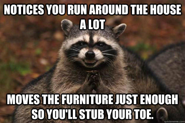 notices you run around the house a lot moves the furniture just enough so you'll stub your toe. - notices you run around the house a lot moves the furniture just enough so you'll stub your toe.  Evil Plotting Raccoon