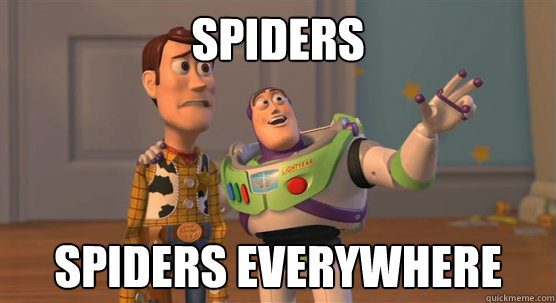 spiders spiders everywhere