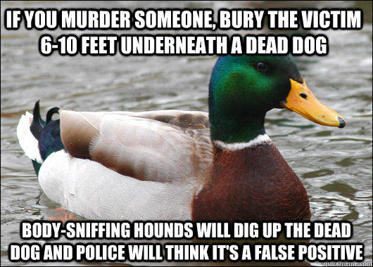 If you murder someone, bury the victim 6-10 feet underneath a dead dog Body-sniffing hounds will dig up the dead dog and police will think it's a false positive - If you murder someone, bury the victim 6-10 feet underneath a dead dog Body-sniffing hounds will dig up the dead dog and police will think it's a false positive  Actual Advice Mallard