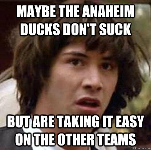 Anaheim Ducks Suck 22