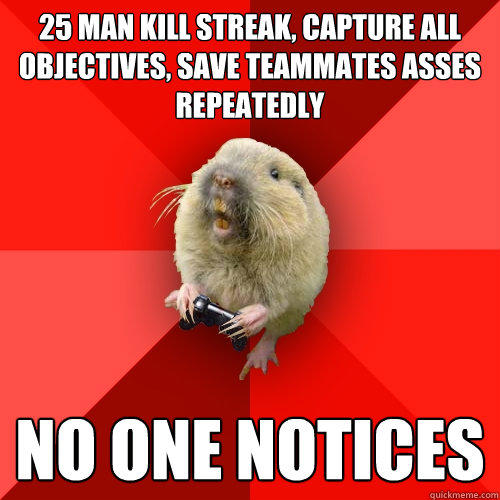 25 man kill streak, capture all objectives, save teammates asses repeatedly no one notices  Gaming Gopher