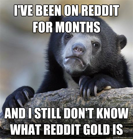 I've been on reddit for months and i still don't know what reddit gold is - I've been on reddit for months and i still don't know what reddit gold is  Confession Bear