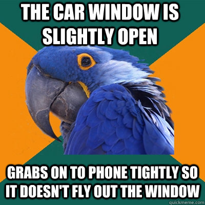 The car window is slightly open Grabs on to phone tightly so it doesn't fly out the window - The car window is slightly open Grabs on to phone tightly so it doesn't fly out the window  Paranoid Parrot