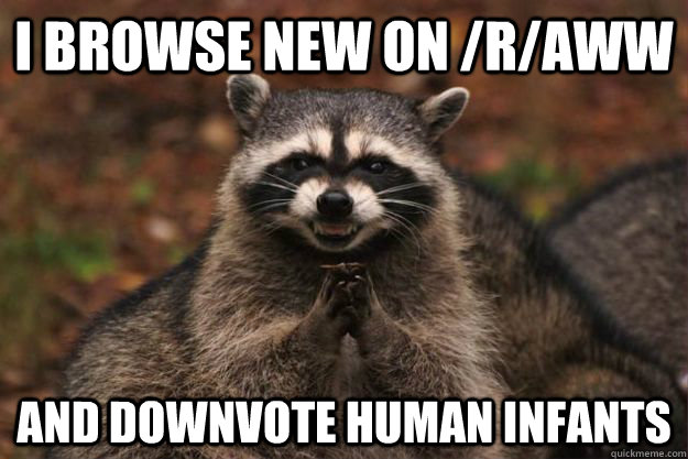 I browse new on /r/aww and downvote human infants  Evil Plotting Raccoon