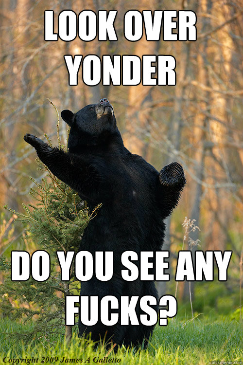 look over yonder Do you see any fucks? - look over yonder Do you see any fucks?  Misc