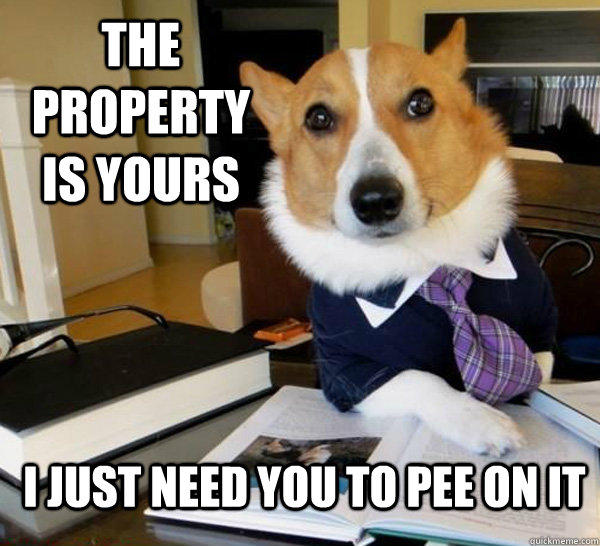 The property is yours I just need you to pee on it  Lawyer Dog
