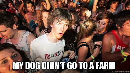 my dog didn't go to a farm -  my dog didn't go to a farm  Sudden Clarity Clarence