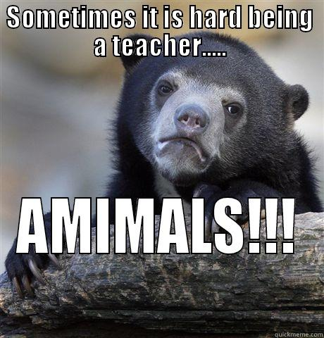 Sad Bear - SOMETIMES IT IS HARD BEING A TEACHER..... AMIMALS!!! Confession Bear
