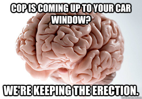 cop is coming up to your car window? we're keeping the erection. - cop is coming up to your car window? we're keeping the erection.  Scumbag Brain