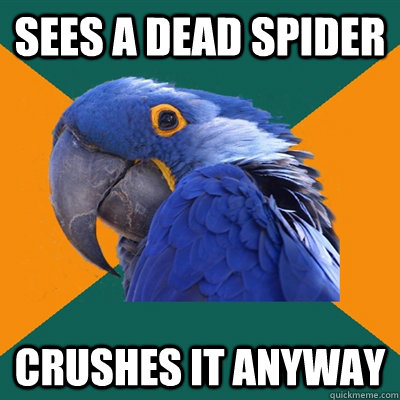 sees a dead spider crushes it anyway - sees a dead spider crushes it anyway  Paranoid Parrot
