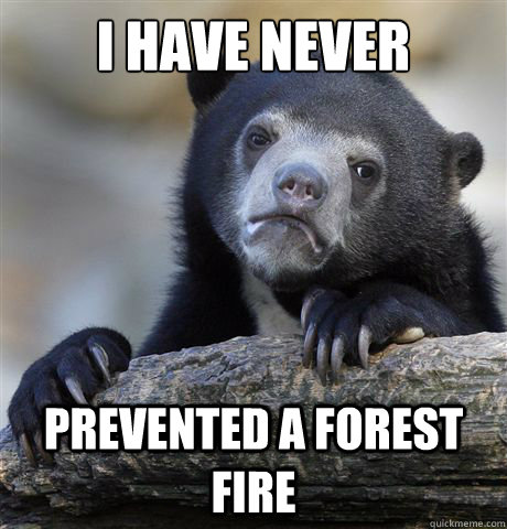 I have never prevented a forest fire - I have never prevented a forest fire  Confession Bear