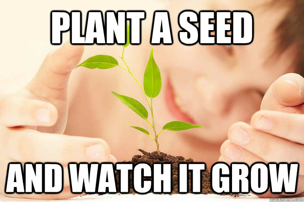 plant a seed and watch it grow - plant a seed and watch it grow  Karma Plant