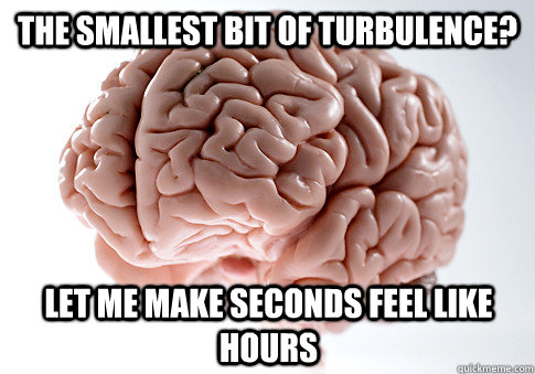 The smallest bit of turbulence? Let me make seconds feel like hours - The smallest bit of turbulence? Let me make seconds feel like hours  Scumbag Brain