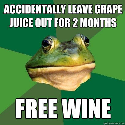 accidentally leave grape juice out for 2 months FREE WINE  - accidentally leave grape juice out for 2 months FREE WINE   Foul Bachelor Frog