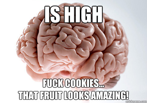 Is high Fuck cookies... that fruit looks amazing! - Is high Fuck cookies... that fruit looks amazing!  Scumbag Brain