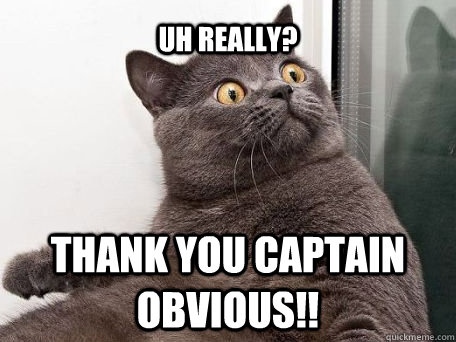uh really?  thank you captain obvious!!  conspiracy cat