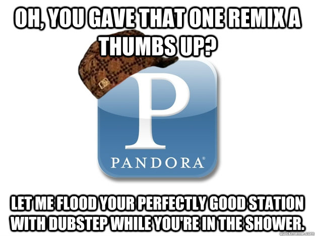 Oh, you gave that one remix a thumbs up? Let me flood your perfectly good station with dubstep while you're in the shower.