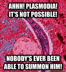 Ahhh! Plasmodia! It's not possible!  Nobody's ever been able to summon him! - Ahhh! Plasmodia! It's not possible!  Nobody's ever been able to summon him!  First thought in my head when my biology teacher said Plasmodia.