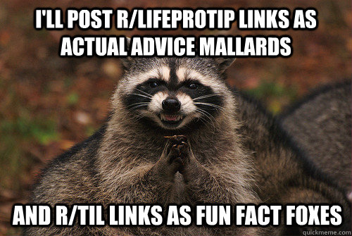 I'll post r/lifeprotip links as actual advice mallards  and r/til links as fun fact foxes - I'll post r/lifeprotip links as actual advice mallards  and r/til links as fun fact foxes  Insidious Racoon 2