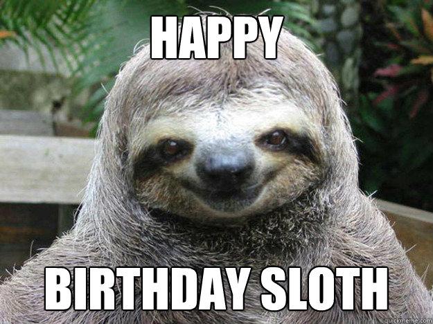 HAPPY BIRTHDAY SLOTH  happy birthday sloth