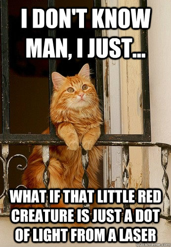 I don't know man, I just... What if that little red creature is just a dot of light from a laser  Introspective Cat