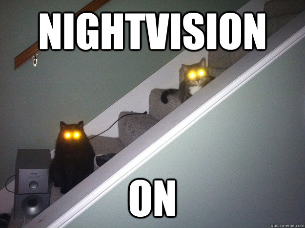 NIGHTVISION ON - NIGHTVISION ON  demoncats