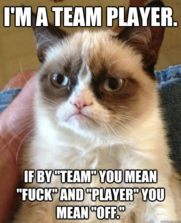 are you a good team player