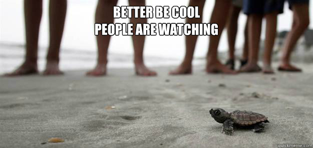 Better be cool people are watching - Better be cool people are watching  Misc