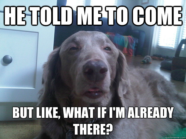 He told me to come but like, what if i'm already there?  - He told me to come but like, what if i'm already there?   10 Dog