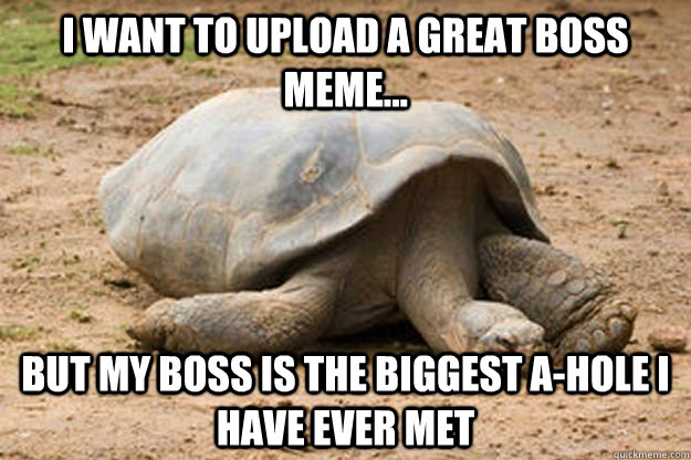 I want to upload a great boss meme... but my boss is the biggest a-hole I have ever met  Depression Turtle