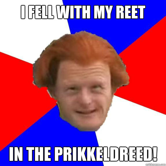 I fell with my reet In the prikkeldreed!