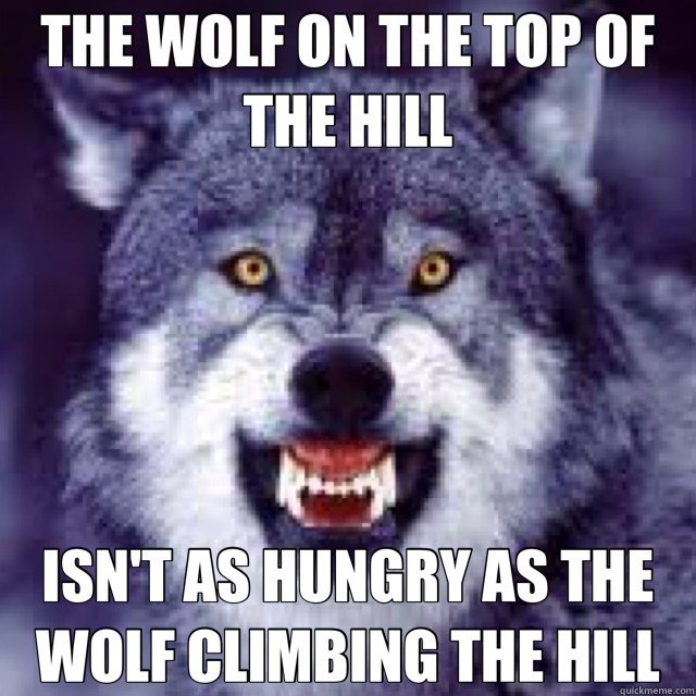 THE WOLF ON THE TOP OF THE HILL ISN'T AS HUNGRY AS THE WOLF CLIMBING THE HILL - THE WOLF ON THE TOP OF THE HILL ISN'T AS HUNGRY AS THE WOLF CLIMBING THE HILL  Misc