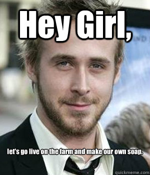 af12ad2894802d08caa295055019fa38b90089bd40b758fc18ddfc0a43419fd8 hey girl, let's go live on the farm and make our own soap ryan