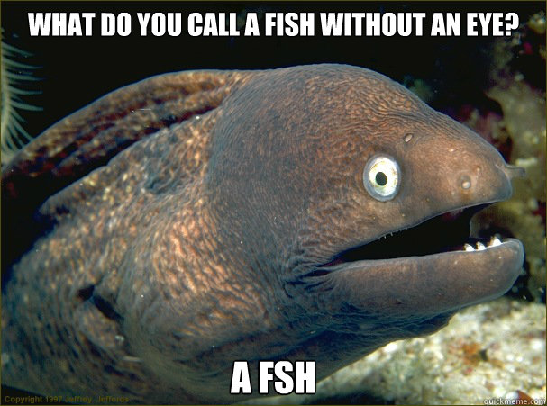 What do you call a fish without an eye? A fsh  Bad Joke Eel