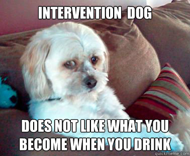 af3fc23fe5fc29c6850bf66e5dea39208f8c5519fbccf8b08c0fa8d8a7358805 intervention dog does not like what you become when you drink