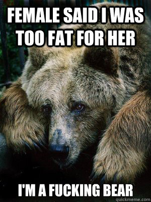 bear meme Sad
