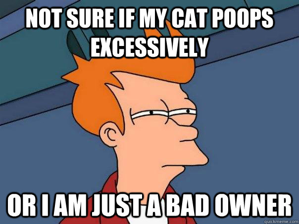 Not sure if my cat poops excessively Or I am just a bad owner - Not sure if my cat poops excessively Or I am just a bad owner  Futurama Fry