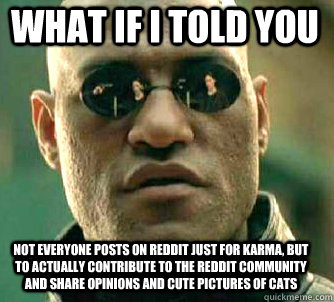 what if i told you Not everyone posts on reddit just for karma, but to actually contribute to the reddit community and share opinions and cute pictures of cats - what if i told you Not everyone posts on reddit just for karma, but to actually contribute to the reddit community and share opinions and cute pictures of cats  Matrix Morpheus